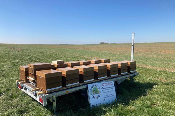 Les ruches sont très peu remplie cette année. Peu de miel et peu de population d'abeilles pour 2021