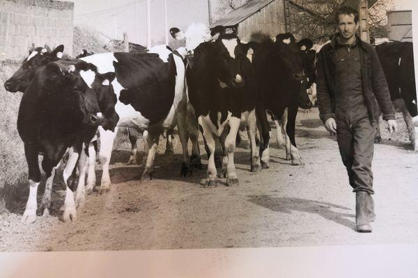 Hervé Béasse en 1991, avec son troupeau qui sera abattu par la suite, à la suite de la découverte d'un cas d'ESB