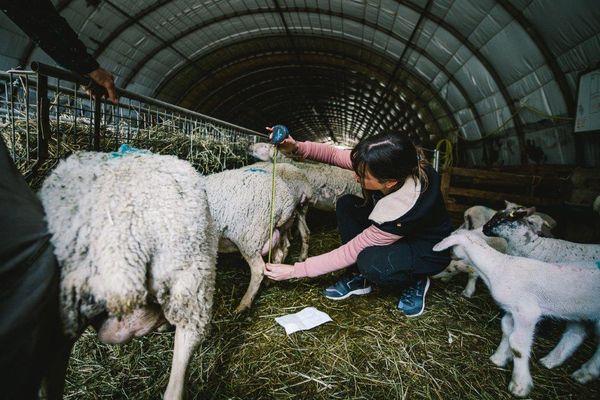 Elena Di Giovani a fait des repérages dans une bergerie avant de commencer son travail