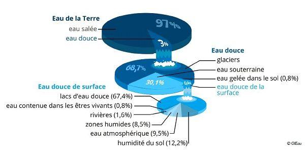 Au total, les zones humides représentent 8% de l'eau douce