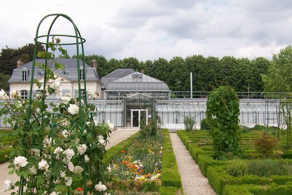 Jardin des plantes à Amiens