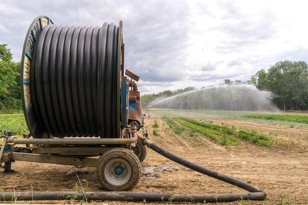 Des restrictions d'arrosage en vigueur dans le Loiret