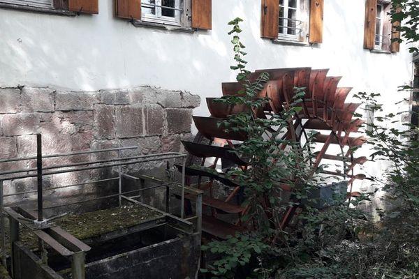 Le CINE du Moulin nature à Lutterbach