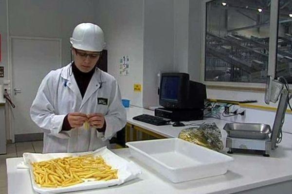 Laboratoire frites surgelées - Mc Cain - Matougues