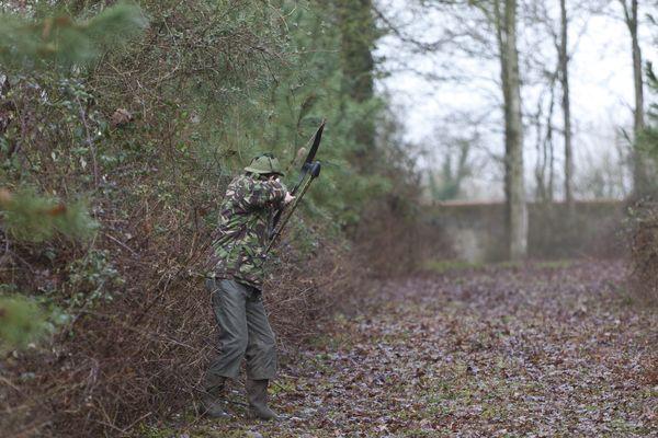 Dans les Hautes-Alpes, la chasse aux sangliers est autorisée par balle ou avec des flèches. (Illustration)