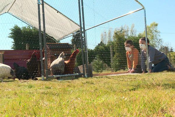 Deux garçons devant leur enclos à poules pondeuses