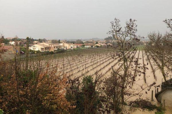 Aux alentours, les vignes sont inondées