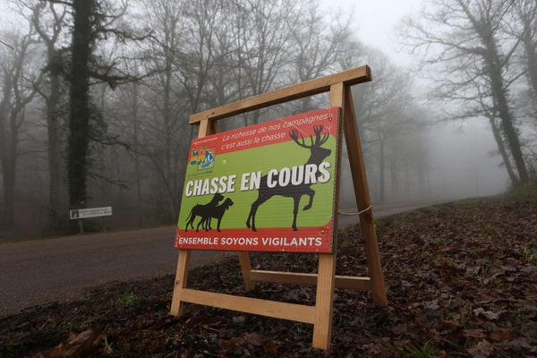 La vigilance reste de mise en Occitanie lors des périodes de chasse - septembre 2021