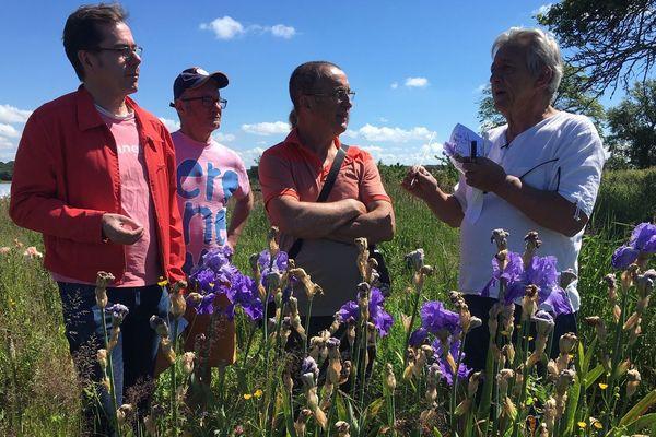 Christian Leydet propose de contempler 1800 variétés d'iris.