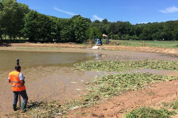 Les travaux d'aménagement ont commencé sur les bords de l'étang du Ruderop, à Bethoncourt (Doubs)