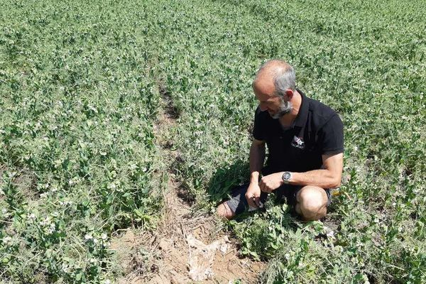 """Avec """"Plante ton slip"""", Jérôme Leduc a pu connaître l'état de santé de son sol facilement."""
