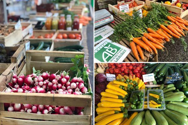 Fruits et légumes bio du marché de Tours.
