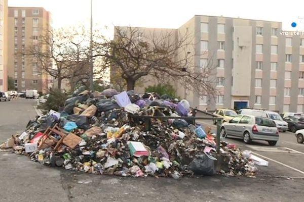 Selon le Syvadec, 70 % des contenus des poubelles corses pourraient être valorisés.