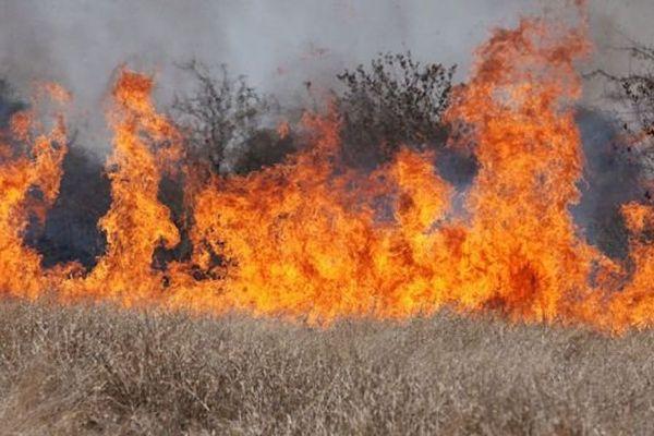 ILLUSTRATION d'incendie
