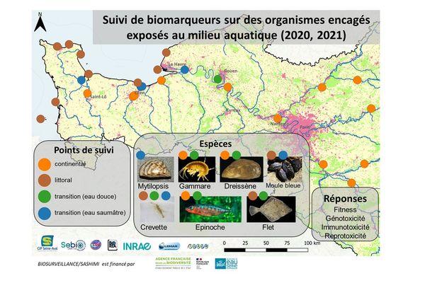 """Le but du projet : """"produire une cartographie des effets sur le vivant de la toxicité liée à la multi-contamination des masses d'eau""""."""