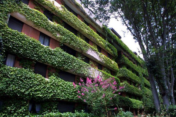 A Toulouse, le prix médian au m2 a atteint les 3.000 € voire plus dans certains quartiers.