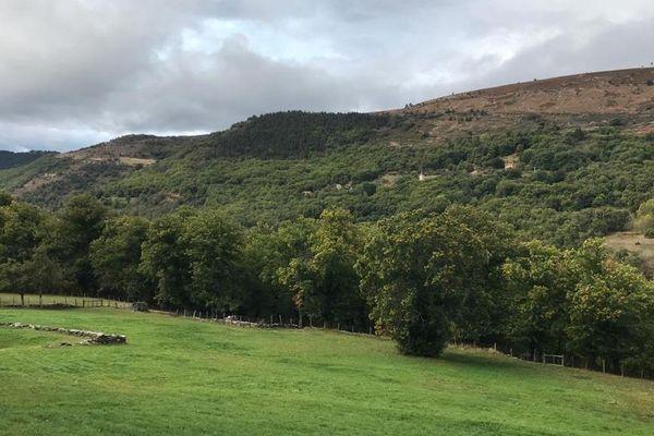 Les paysages de la haute Ardèche.