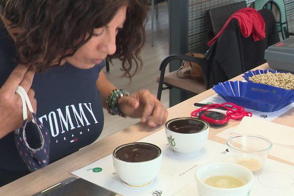 Cinq modules pour devenir un expert en café certifié.
