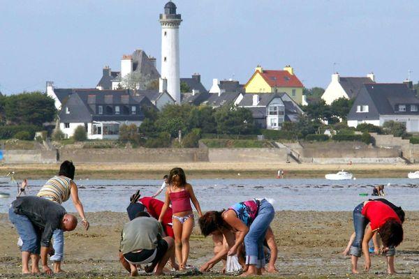 Le ramassage des coquillages dans certains secteurs du Morbihan reste interdite par la préfecture