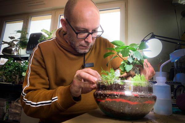 Tous les ans Sébastien Boess réalise une centaine de terrarium