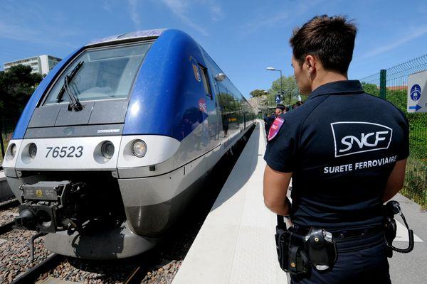 Illustration- Une centaine d'agents patrouille dans les trains et les gares de la région PACA.