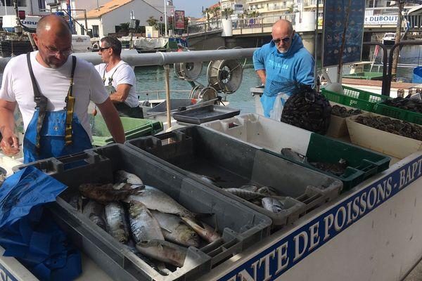 Même chez les petits métiers de Palavas-les-Flots dans l'Hérault, ils ne sont plus qu'un quart à sortir encore en mer et à vendre.