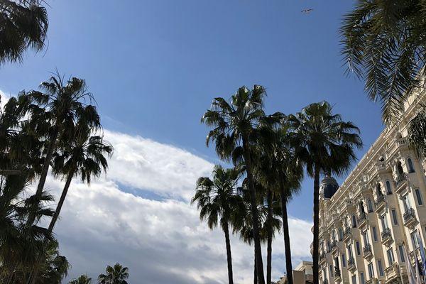 Le Carlton de Cannes où Brad Pitt a ses habitudes Brad Pitt