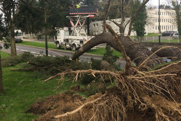 Suite a la chute d'un arbre qui a endommagé le réseau, la ligne 3 du tramway nantais a été en partie coupée. Des bus relais ont été miss en place.
