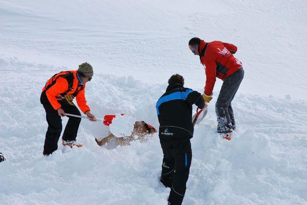 07-02-2019 : les maîtres et leurs chiens sont en plein exercice pour secourir les victimes ensevelies sous la neige.