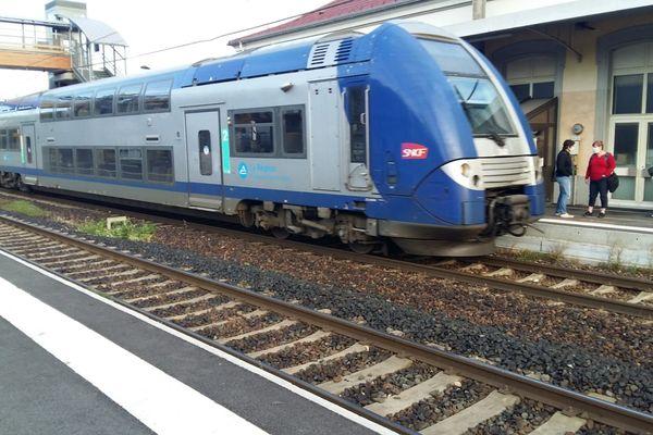 """La Région Auvergne-Rhône-Alpes promet un investissement d'un milliard d'euros pour les transports, afin de devenir """"la première région décarbonée"""" d'Europe, d'ici 2027, dans le cadre du prochain contrat de plan Etat-Région dont l'écriture a débuté."""