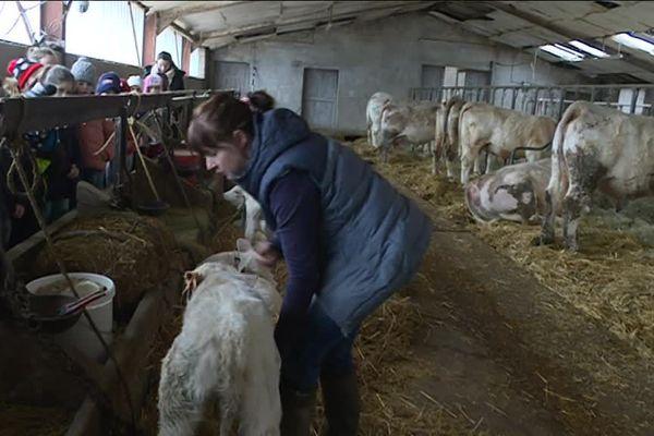 Hélène est éleveuse de bovins sur l'exploitation familiale.