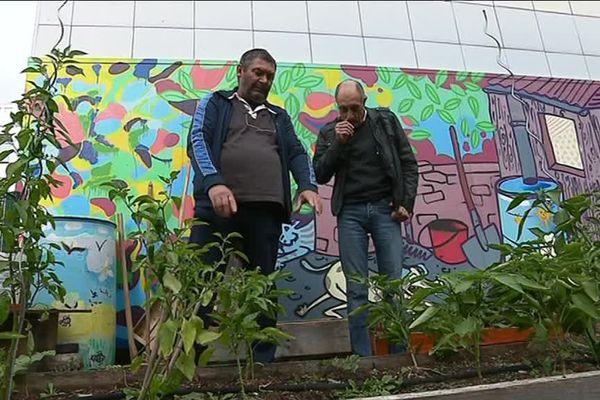 Planoise, à Besançon, du vert aux pieds des immeubles