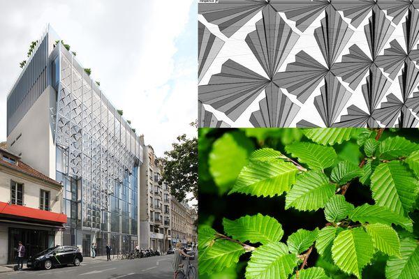 Les feuilles de charme inspirant la façade d'un immeuble, c'est le biomimétisme.