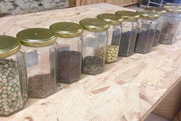 Dans ces bocaux en verre, quelques semences bio bientôt autorisées à la vente