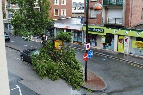 Un arbre cassé dans le centre-ville de Lisieux après l'orage du 27 juillet