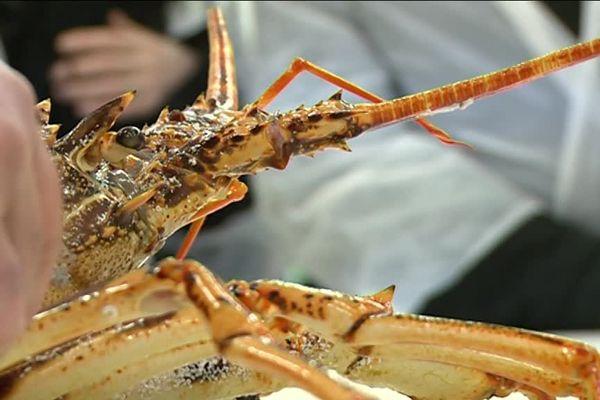Parmi les invités, le roi des marchés d'hiver, le homard, bien sûr !