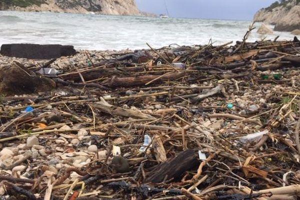 Des boulettes d'hydrocarbure parmi les détritus ramenés par la mer sur la plage de Sormiou.