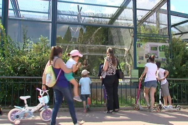 Le zoo du parc de la tête d'or visité par plus de 3 millions de personnes chaque année et une institution pour les Lyonnais (archives)