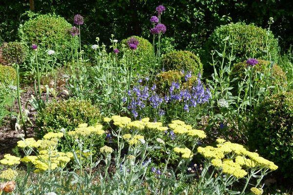 Le jardin de Lulu à Labastide d'Armagnac(40) participe aux Rendez-vous au jardin.