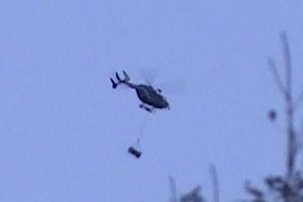 L'hélicoptère a lâché l'ourse slovène vers 8 heures ce jeudi matin en vallée d'Aspe.