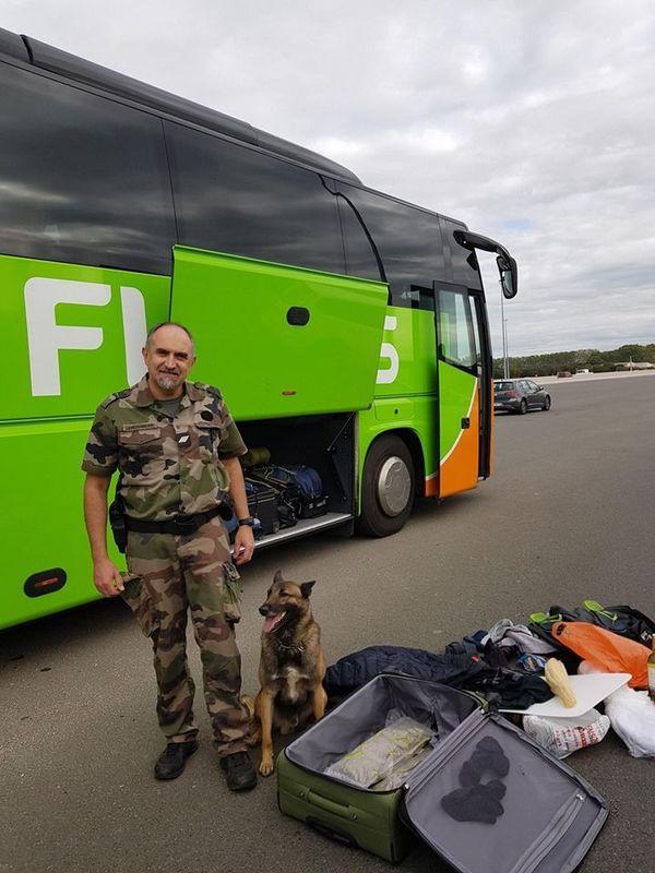 Le contrôle d'un Flixbus sur l'A709 a conduit à la saisie de 2,3 kg d'herbe de cannabis dans la valise d'un voyageur
