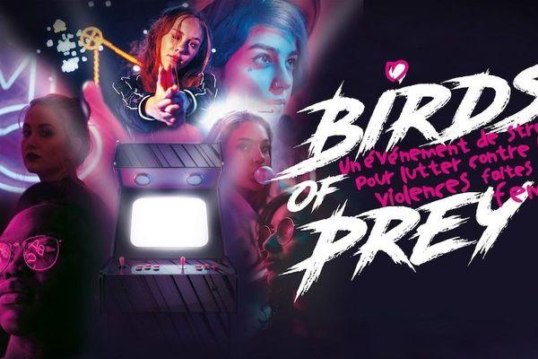 Le stream Birds of Prey aura lieu pendant 24 heures du samedi 21 novembre à 11h au dimanche 22 novembre.