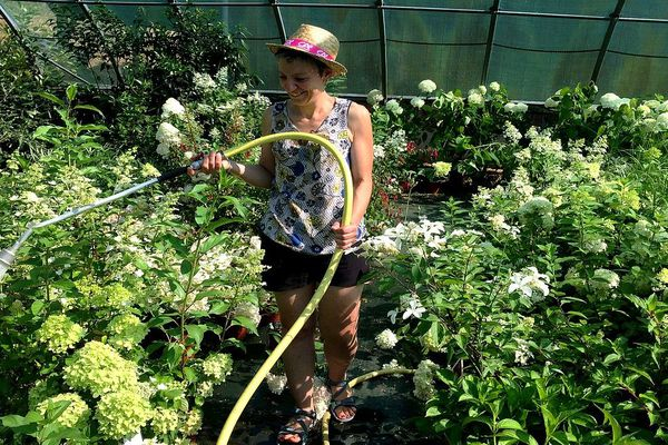 Avec la canicule et la sécheresse les horticulteurs de Limoges comme Anne-Cécile Caillaud ont dû s'adapter