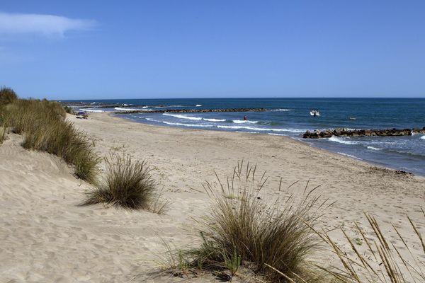 La plage de l'Espiguette pourrait de nouveau accueillir des nageurs - 05/2020