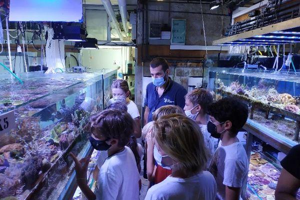 """""""Océano pour tous"""" permet aux enfants d'accéder aux coulisses du musée."""