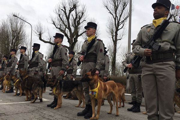 Le régiment concentre le plus grand nombre de chiens sur un campement militaire : 550 chiens pour 600 soldats.