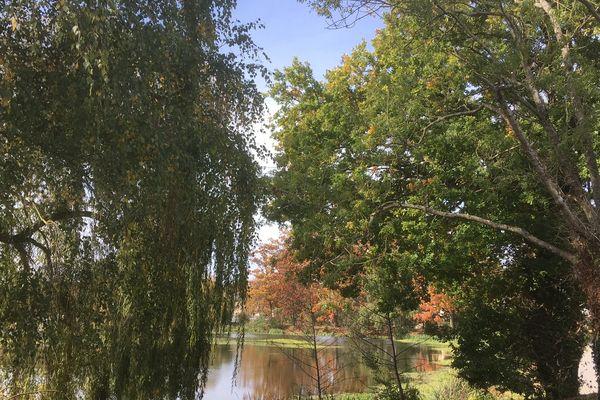 Un des nombreux plans d'eau sur la commune de Cesson-Sévigné : calme et méditation en pleine nature à deux pas de la ville!
