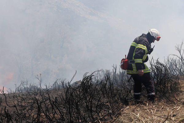 """Le risque """"feux de forêt"""" est très sévère ce lundi sur le littoral méditerranéen - 24 août 2020"""