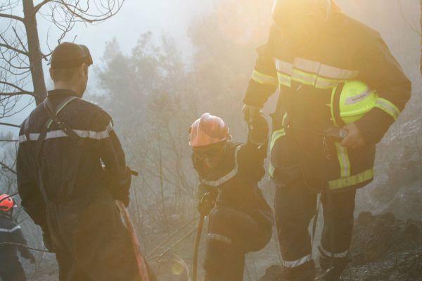 Les pompiers du Var sont intervenus sur des départs de feux, notamment dans la forêt de Bagnols.
