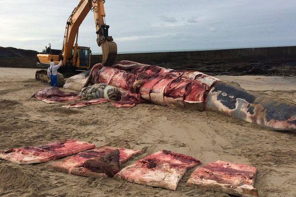 La baleine échouée à Batz-sur-Mer a été découpée, le 24 janvier 2019